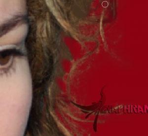 Imagen 13 آموزش تصویری حذف پس زمینه از بین مو در فتوشاپ