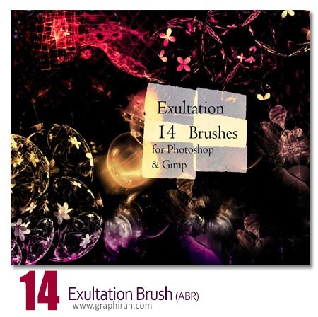 exultation brushes