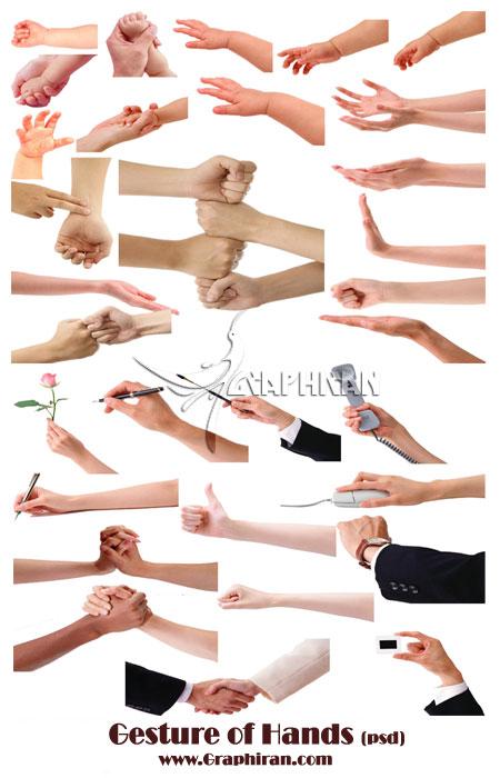 201101201019544 تصاویر انواع اشارات دست در فرمت PSD
