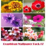 والپیپر گل و طبیعت سری ۷ | Flower Wallpaper No7