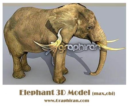 Elephant-3d-model