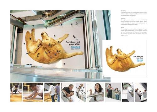 dsd 5 تبلیغات تجاری خلاقانه و شگفت انگیز   Creative Advertisement