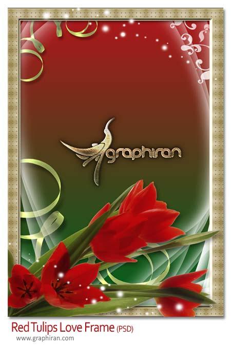 دانلود فریم و قاب عکس PSD با طرح گل لاله قرمز