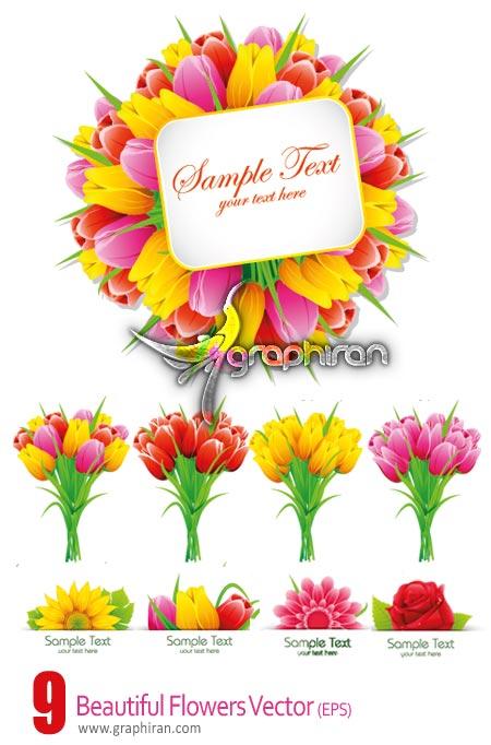 دانلود وکتورهای گرافیکی تصاویر گل های رنگی و زیبا