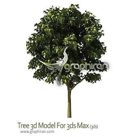 دانلود آبجکت درخت برای تری دی مکس