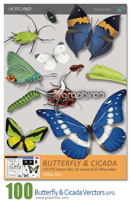 مجموعه عظیم وکتورهای طرح پروانه و حشرات برای فتوشاپ