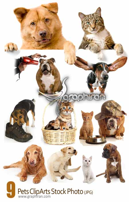 دانلود کلیپ آرت عکس های سگ و گربه - Pets Cliparts