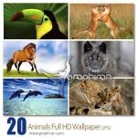 دانلود مجموعه والپیپر حیوانات با کیفیت HD – سری ۱۷
