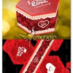 دانلود الگوی بسته بندی جعبه هدیه عاشقانه با نقش گل سرخ و قلب