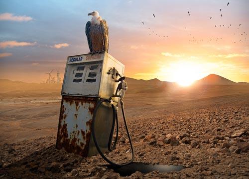 عقاب بیابان