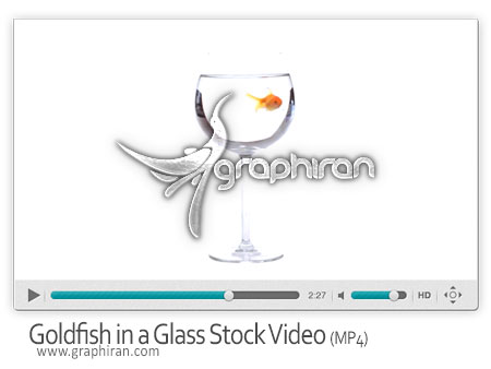 Goldfish in a Wine Glass