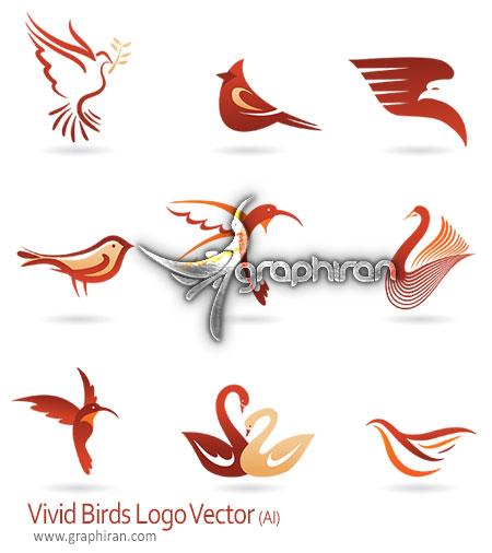 وکتور لوگو با طرح پرنده