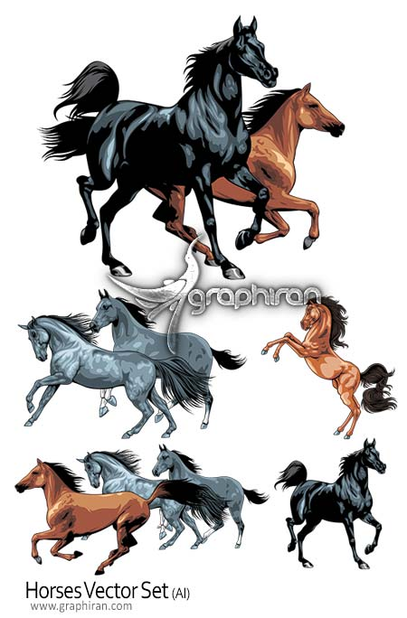 دانلود وکتور اسب horses vector set