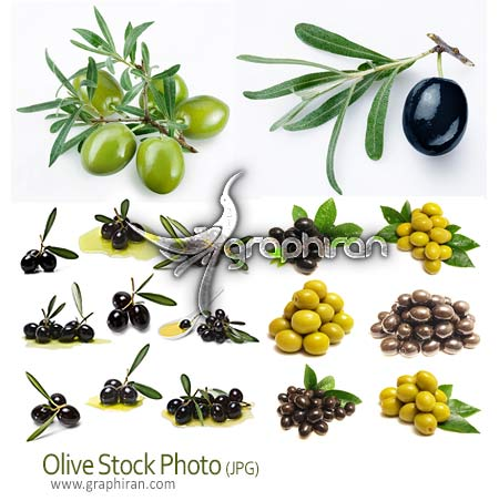 عکس باکیفیت زیتون olives stock photo