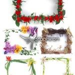دانلود مجموعه تصاویر قاب و حاشیه زیبا و گل دار Photo Frame