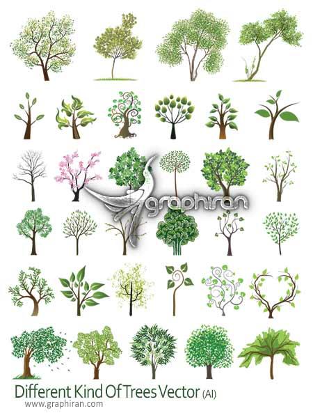 tree vector دانلود تصاویر وکتور انواع درخت با پس زمینه شفاف Tree Vector