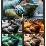 Exceptional Photo Effects 150x150 اکشن فتوشاپ افکت رنگ های هنری Artisto 3 Photoshop Action