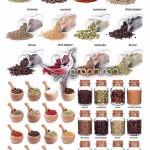 عکس استوک انواع ادویه جات و چاشنی غذا Herb Spices Stock Photo