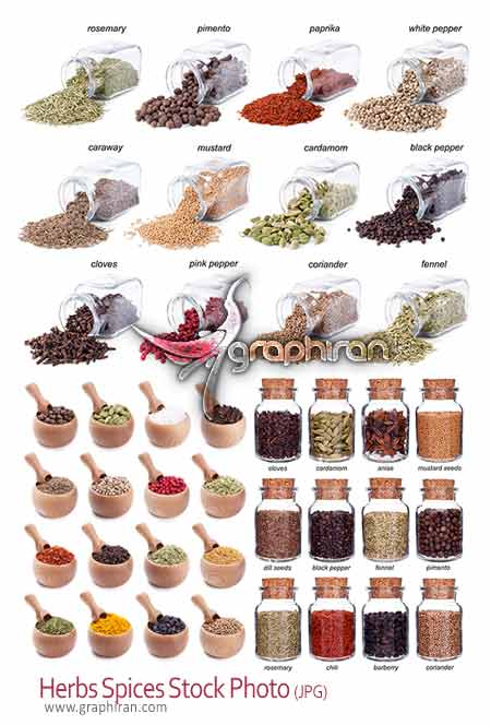 Herbs spices photo