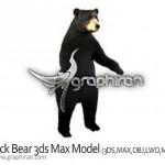 دانلود رایگان مدل آماده خرس برای تری دی مکس Bear 3ds Max Model