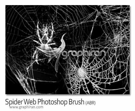 براش تار عنکبوت فتوشاپ
