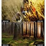 cinema effects actions 150x150 دانلود مجموعه اکشن های فتوشاپ و تکسچر ساخت افکت فیلم سینمایی