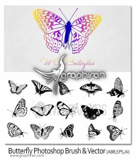 butterfly دانلود براش باکیفیت پروانه برای فتوشاپ همراه با وکتور EPS و AI