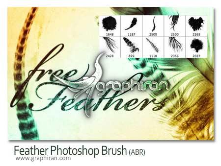 feather brush دانلود براش پر پرندگان فتوشاپ Feathers Photoshop Brush