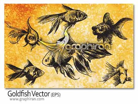 وکتور ماهی های قرمز عید نوروز