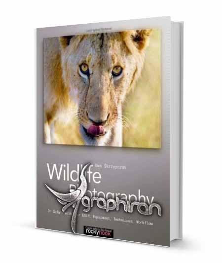 کتاب آموزش عکاسی از حیات وحش