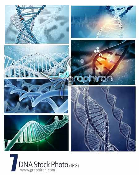 عکس شاتر استوک مولکول DNA