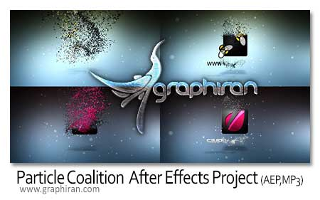 Particle Coalition