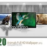 دانلود مجموعه والپیپر جدید و زیبای حیوانات وحشی