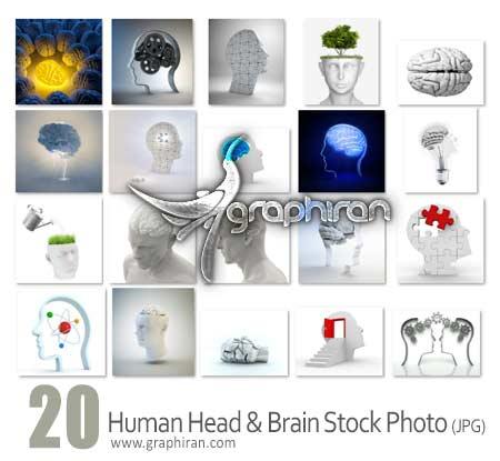 عکس استوک از مغز و سر انسان