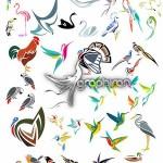 دانلود مجموعه وکتور تصاویر انتزاعی پرندگان از ShutterStock