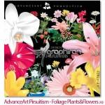 دانلود مجموعه وکتورهای گرافیکی گل و گیاه های زیبا با تنوع بالا