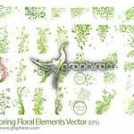 دانلود مجموعه وکتور گل و بوته های بهاری جدید فرمت EPS