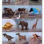 دانلود مجموعه ۳۹ مدل سه بعدی آماده حیوانات برای ۳ds Max