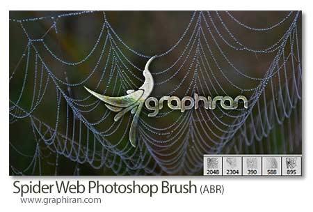 براش تار عنکبوت جدید فتوشاپ