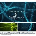 دانلود پروژه افتر افکت سلول های زیستی VideoHive Organic Cell