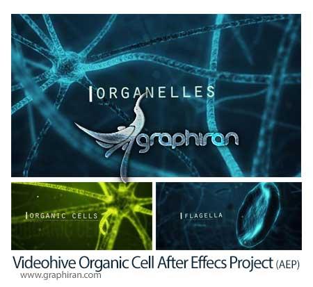 پروژه افتر افکت سلول های زیستی
