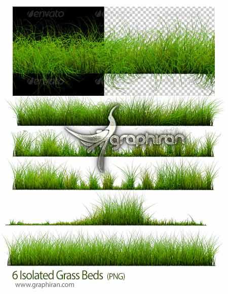 تصاویر چمن PNG