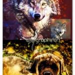 اکشن جدید فتوشاپ طراحی افکت عکس جذاب Artact Photoshop Action