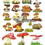 دانلود تصاویر با کیفیت وکتور قارچ Mushrooms Vector