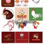 مجموعه تصاویر وکتور لوگو و طراحی مرغ و جوجه از ShutterStock