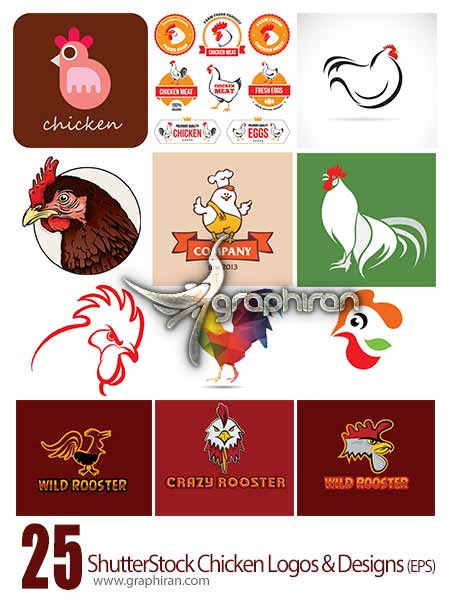 مجموعه تصاویر وکتور لوگو و طراحی مرغ و جوجه از ShutterStockوکتور لوگو و طرح مرغ و جوجه