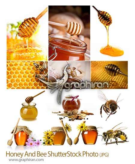 عکس شاتر استوک عسل و زنبور