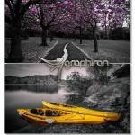 دانلود اکشن فتوشاپ حذف رنگ های عکس به جز بخش انتخاب شده