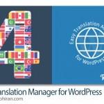 پلاگین ترجمه سایت وردپرس Easy Translation Manager v4.0.5