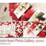 پروژه افتر افکت گالری عکس عاشقانه در کنار گلبرگ های گل سرخ